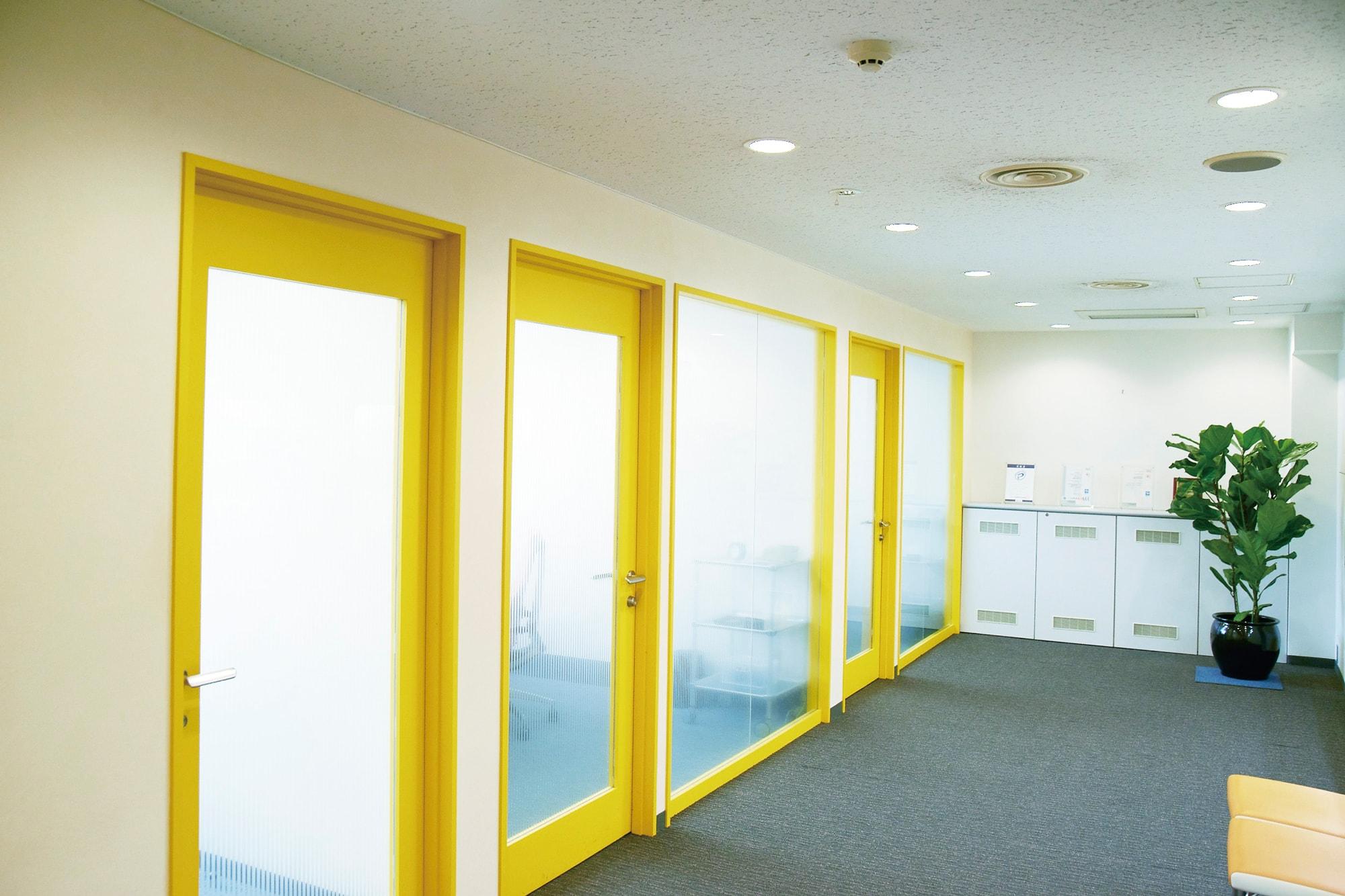 赤坂本部の7階、会議室前フロア。黄色の縁取りが明るい印象です。